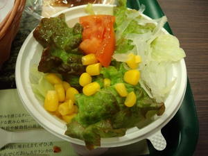 モスバーガーサラダ2.JPG
